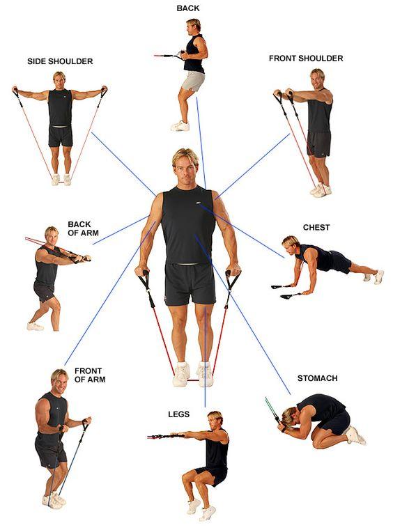 bandas elasticas entrenamiento